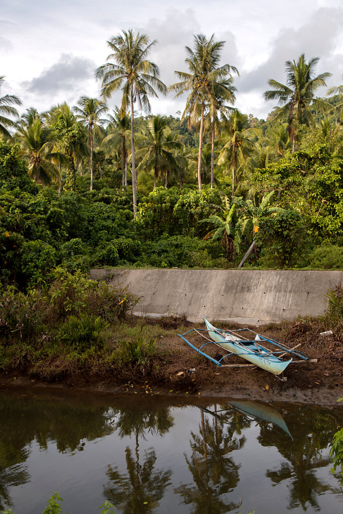 paysage-bord-de-route-bateau-palmier.jpg